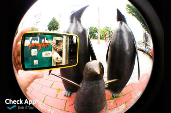 Feed_the_Penguin_Windows_Phone