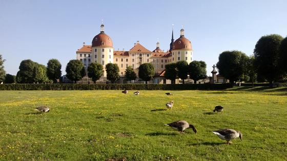 Schloss_ohne_Linse