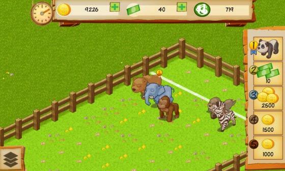 Animal Park Tycoon Wettrennen