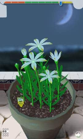 Flower_Garden_Pot
