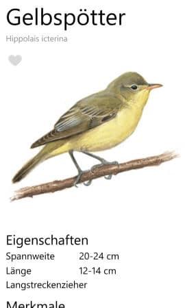 Nabu_Vogelfuehrer_App