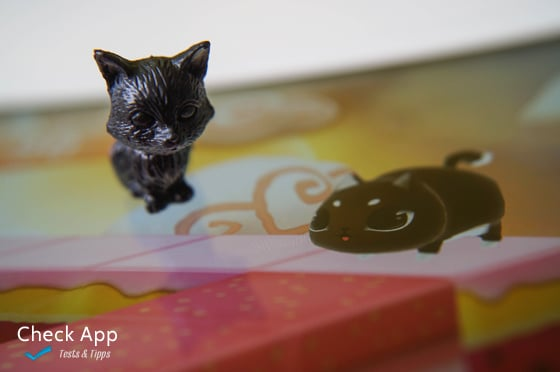 Kitty_in_the_Box_App