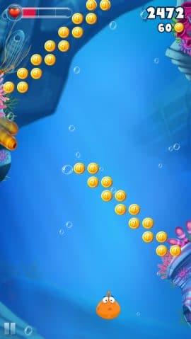 bellyfish endlos schwimmer duello