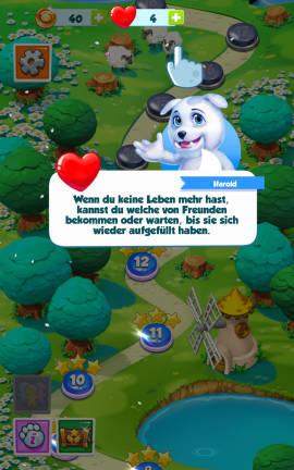 Puzzle_Pets_Leben