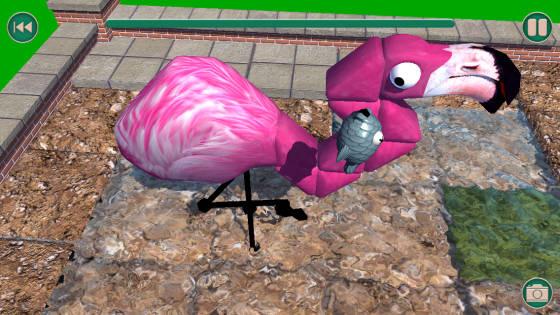 Zoo_Turn_App_Flamingo