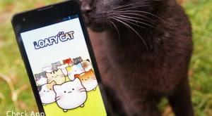 Loafy_Cat_App