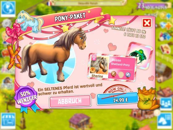 Horse_Haven_Pony