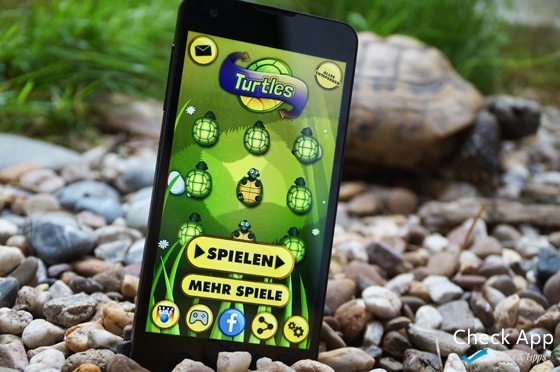 Schildkroeten_Magma_Check-App-Review