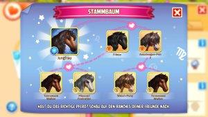 Horse Haven_Sternbild