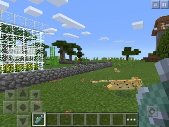 Minecraft_PE_012_Ocelot