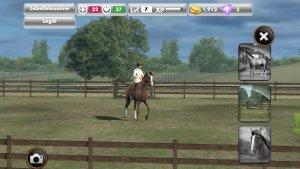 My Horse_Freunde