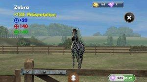 My Horse_Pferde