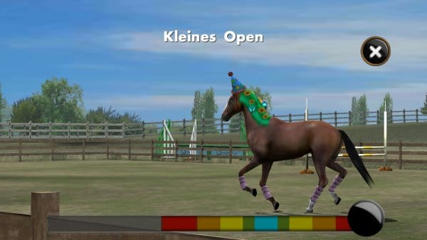 My Horse_Training