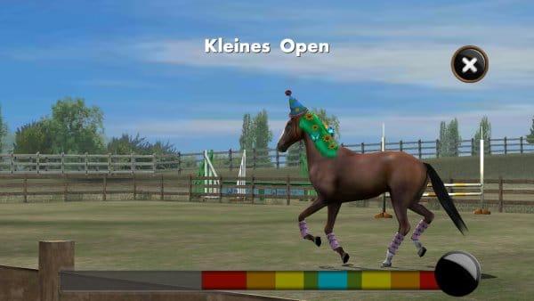 My Horse_Training