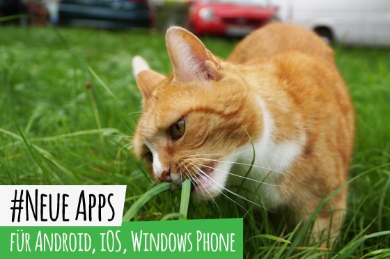 Neue_Apps_Catcontent