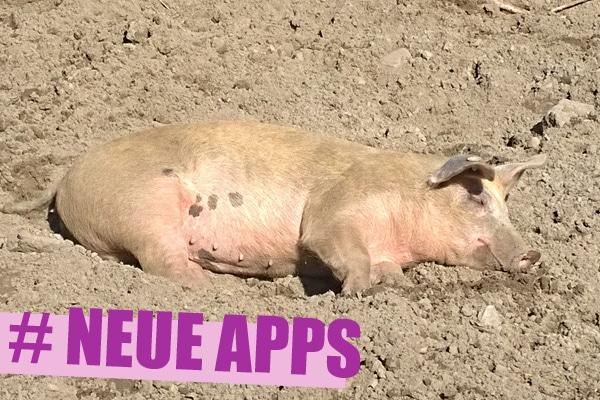 neue apps spiele