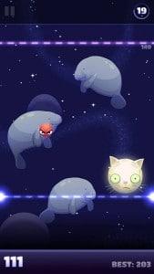 Shoot_the_Moon_cat