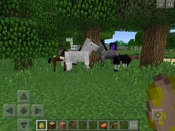 Minecraft_PE_Pferde