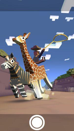 Rodeo_Stampede_Giraffe