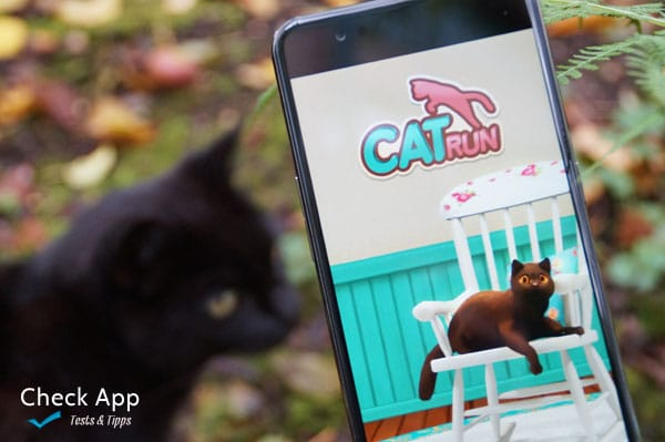 cat_run_app_tivola